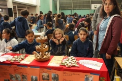 Feria Saludable 2019